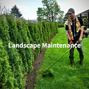 Get Best Chilliwack Landscape Maintenance