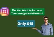 Increase Organic Instagram Followers and Post Engagement